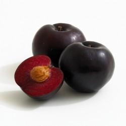 Ciruela Negra 500 gramos