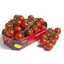 Tomate Cherry rama 250 gr
