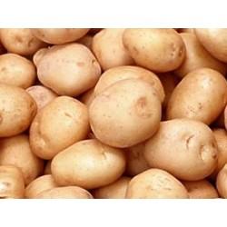 Patatas pequeñas